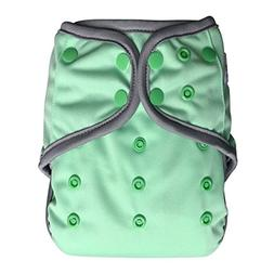 EcoAble Baby Day & Night All-In-One AIO Cloth Diaper w/Rever