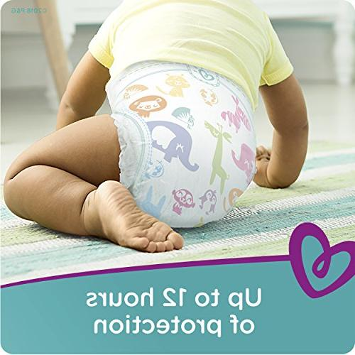 Pampers Baby Count, ONE