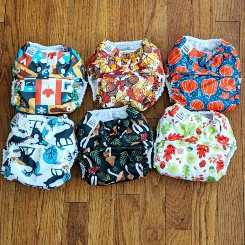 lot of 6 cloth pocket diapers fall