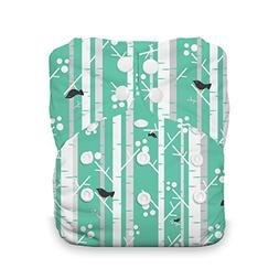 Thirsties One Size All In One Cloth Diaper, Snap Closure, As